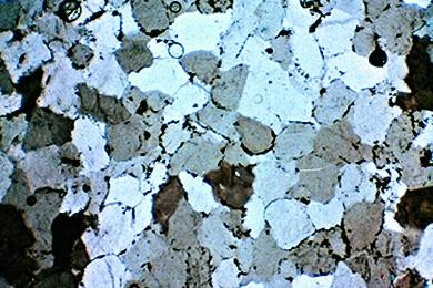 Sandstein, Gesteinsdünnschliff aus Serie V, Dauerpräparat