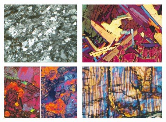 Gesteinsdünnschliffe Serie VI Fossile und Meteorite  4 Dauerpräparate