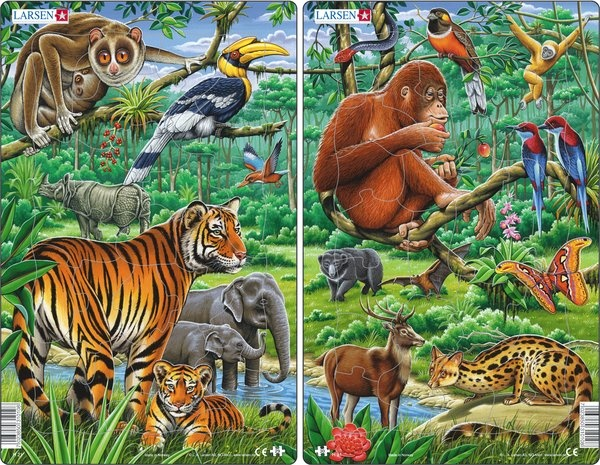 Puzzle - Dschungel (Indien und Südostasien) Format 28,5x18,3 cm,