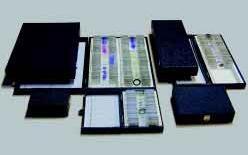 Präparatekasten für 25 Mikropräparate Standardausführung